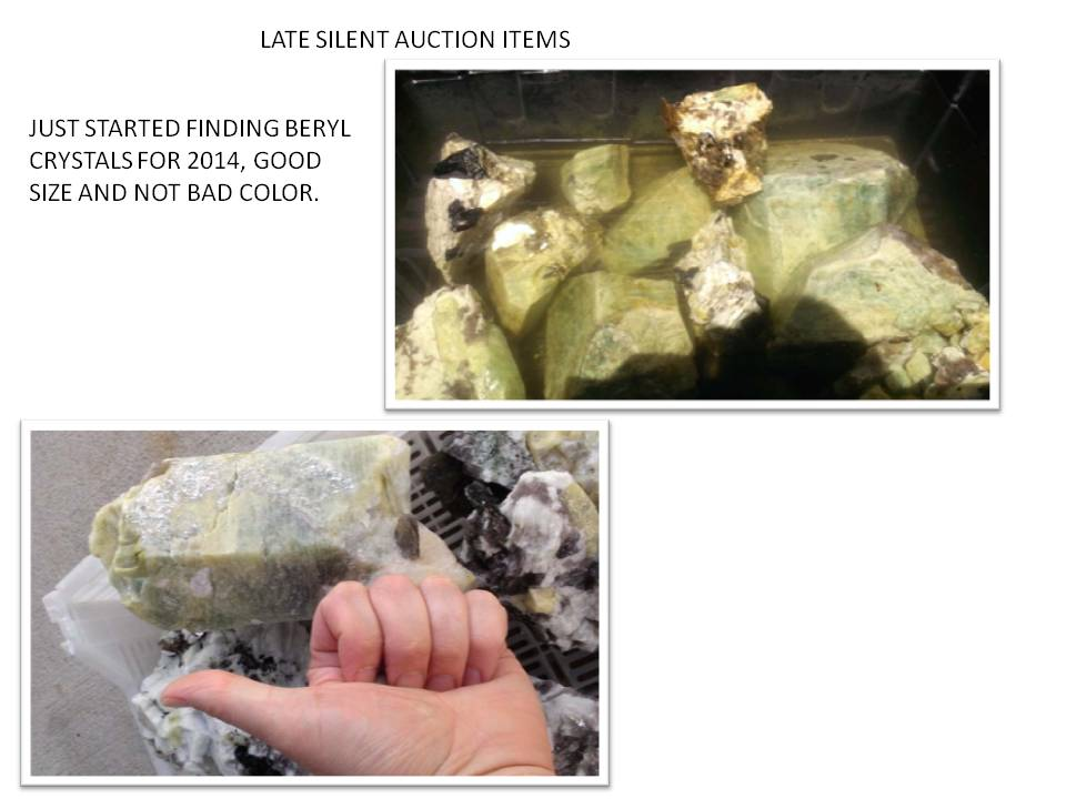 2014 GILSUM SILENT AUCTION-LATE ITEMS